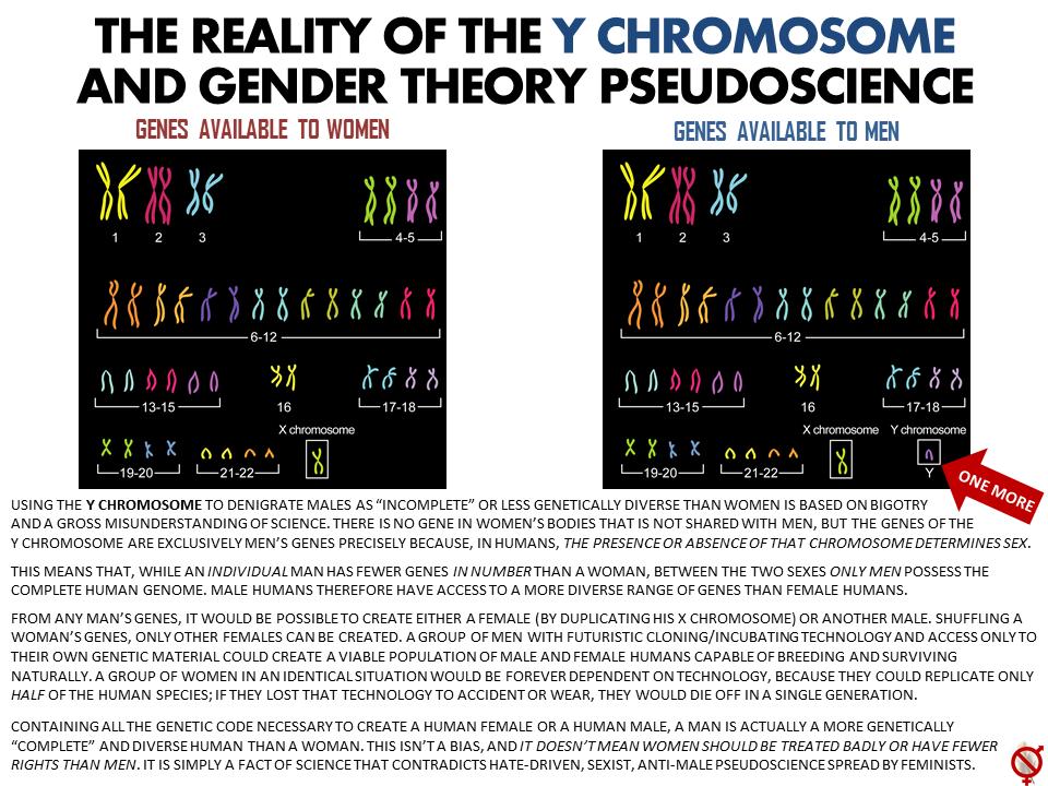 Y-Chromosome